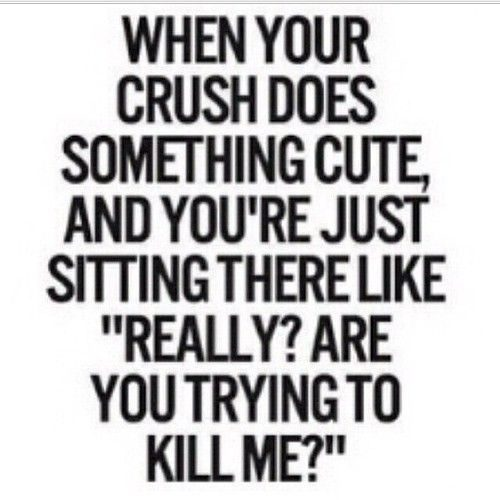 30 Crush Quotes #Crush quotes #Love