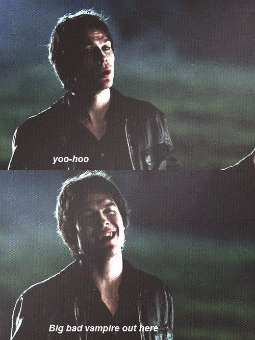 25 Vampire Diaries funny quotes #Vampire #Diaries