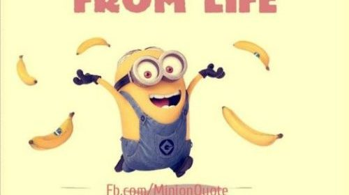 Top 40 Funny Minions Memes