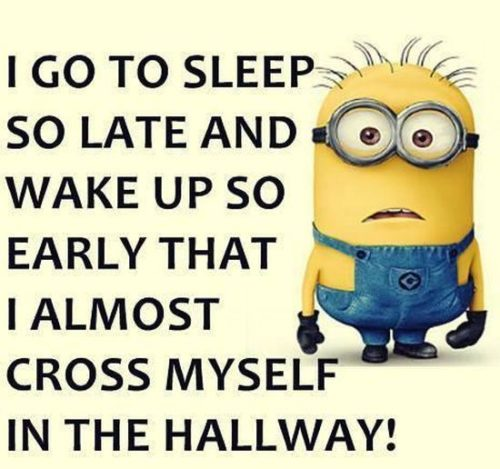 Top 40 Funny Minions Memes #Funny Minions #Memes