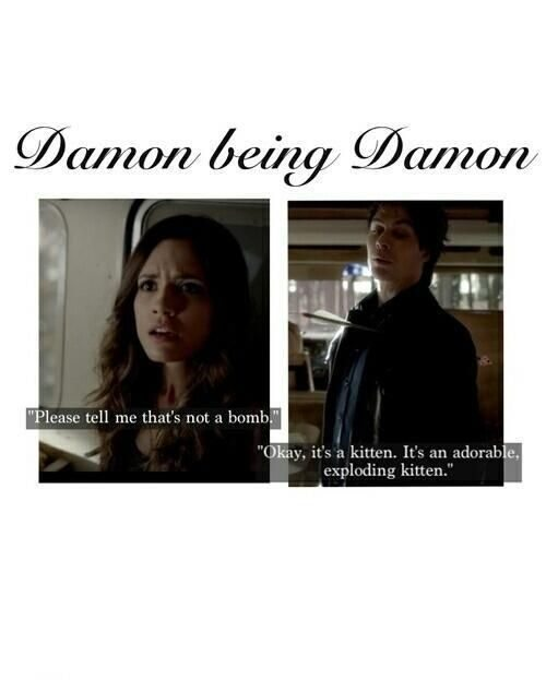 Vampire Diaries Funny Quotes Vampire Diaries
