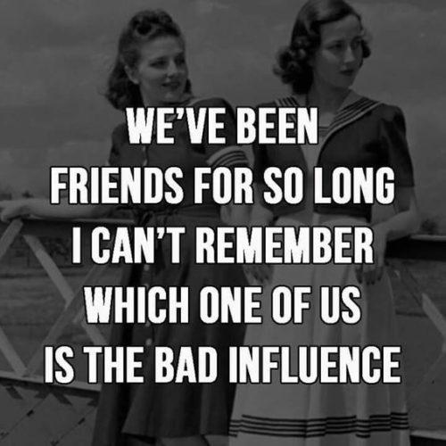 30 Best Funny Friendship Quotes | QuotesHumor.com