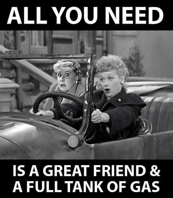 30 Best Funny Friendship Quotes 13 Funny Friendship Quotes