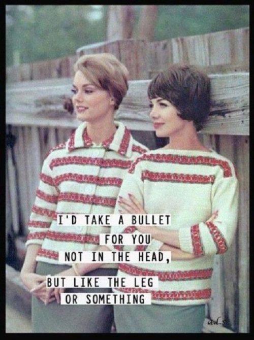 30 Best Funny Friendship Quotes Quoteshumor Com