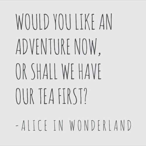 Quotes From Alice In Wonderland Custom 30 Alice In Wonderland Quotes  Quoteshumor