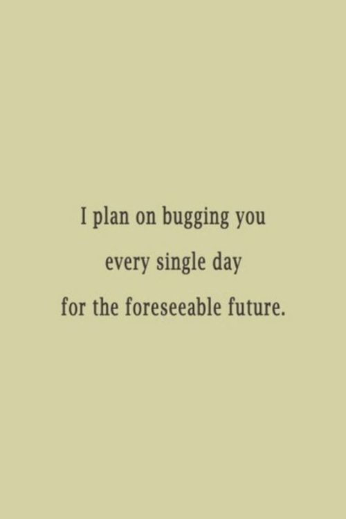 30 Funny Love Quotes #Funny Love #Quotes
