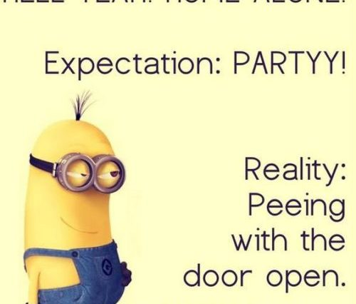 Minions Quotes Archives | QuotesHumor.com