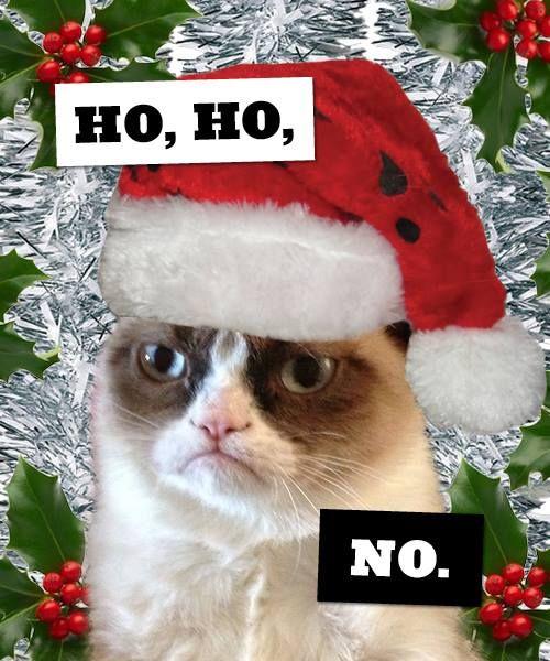 30 Funny Christmas Memes #Christmas #Quotes