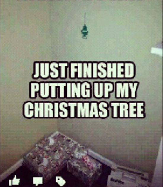Funny Christmas Quotes Mesmerizing 48funnychristmasmemes48christmasquotes QuotesHumor