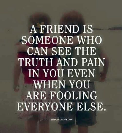 Friends Love Quotes Stunning 30 Love And Friendship Quotes  Quoteshumor