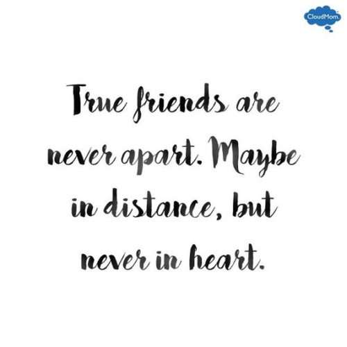 Photo Quotes About Friendship Unique 30 Love And Friendship Quotes  Quoteshumor