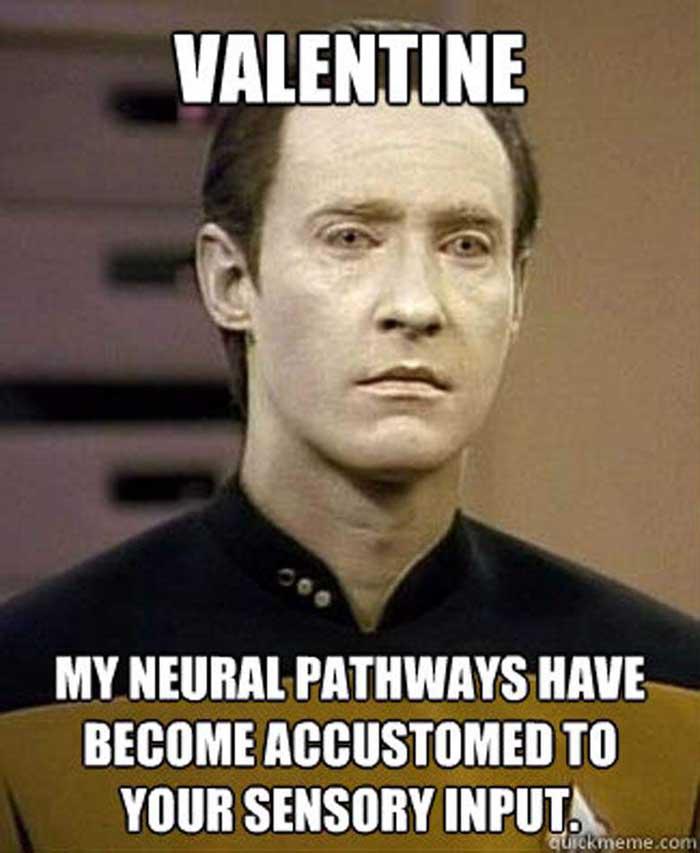 Funny Valentines Meme : Funny valentine s day memes quoteshumor