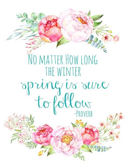19 Best Spring Inspired Quotes | QuotesHumor.com