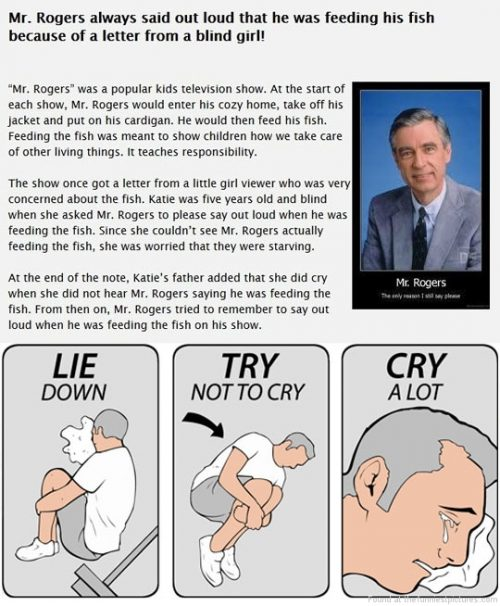 14 Mr  Rogers Quotes That Will Give You The Feels | QuotesHumor com