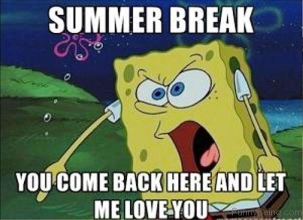 Best Summer Memes 2018 | QuotesHumor.com